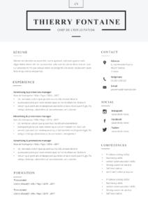 Exemple de CV combiné