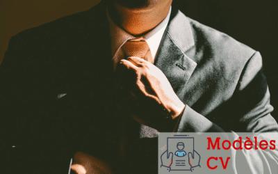 Exemple CV d'un conseiller en assurances