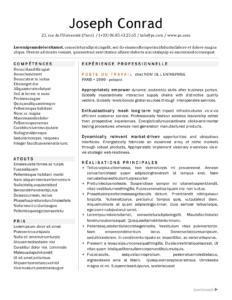 cv en bulletin informatif en français et gratuit