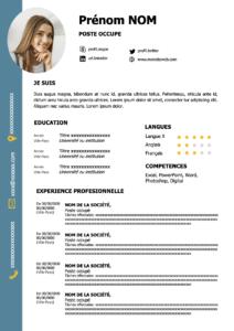 exemple cv marketing français