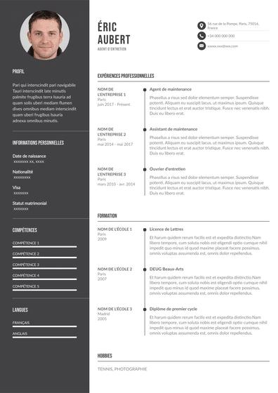 Exemple CV parfait
