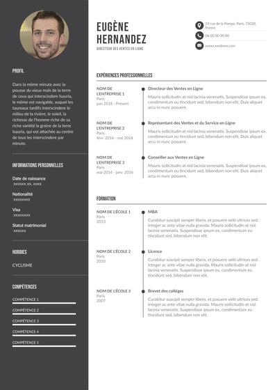 DirecteurDesVentes_Ligne.pdf