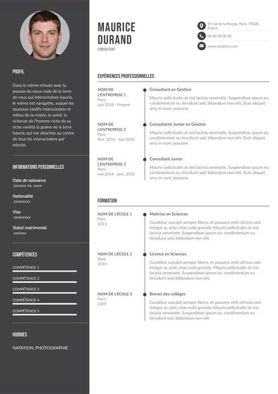 Consultant.pdf