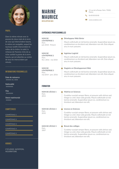 Developpeur_web.pdf