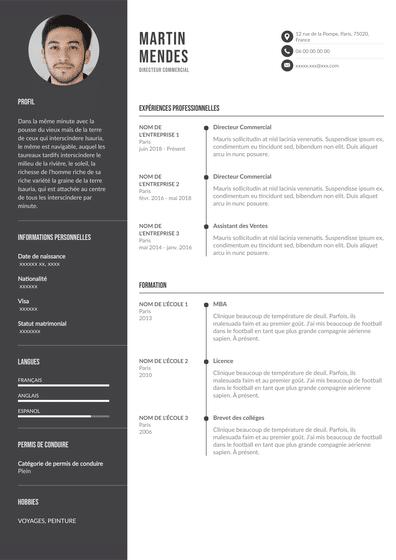 Directeur_commercial.pdf