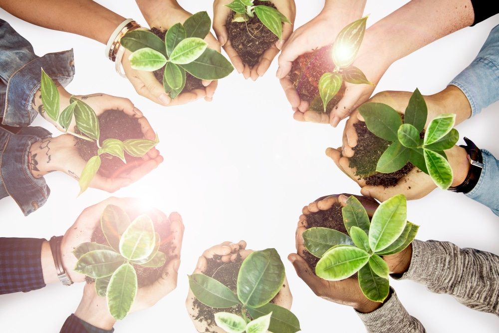 environmentalists-hands-cupping-plants-earth-day-campaign