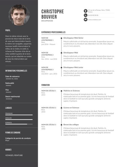 DÉVELOPPEUR WEB.pdf