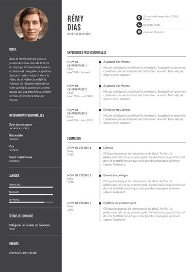 Sales Director Resume.pdf