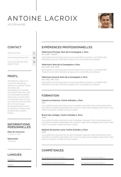Vétérinaire CV (FR)-Chicago.pdf