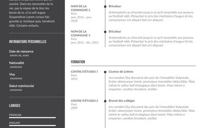 Guide de rédaction CV de bricoleur + Modèles à télécharger